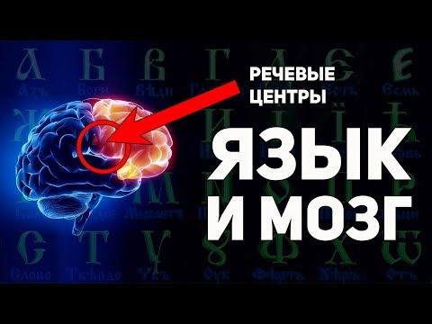Как буквица раскрывает способности мозга. Славянская матрица мировосприятия. А. Ивашко