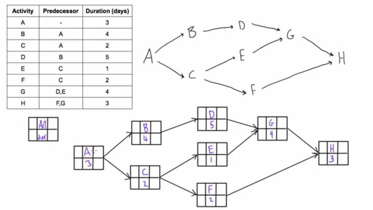 activity logical network diagram