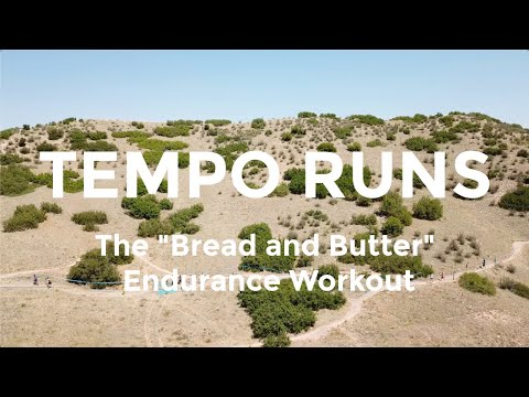 Tempo Runs: Examples, Pacing, and Types of Tempo Workouts