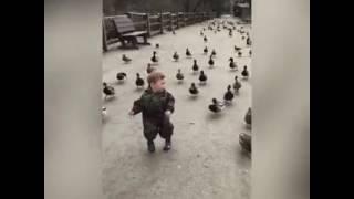 Ducks'  master
