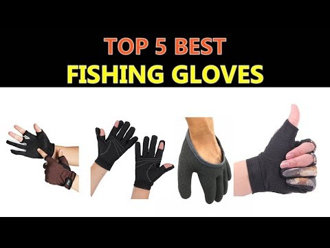Best Fishing Gloves 2020