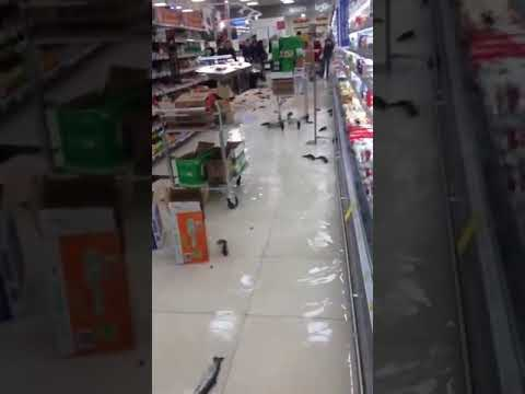 Fish swim on Carrefour supermarket hypermarket store floor in Tbilisi, Georgia viral video