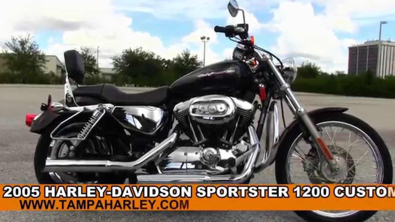2005 harley davidson sportster 1200 custom for sale review specs