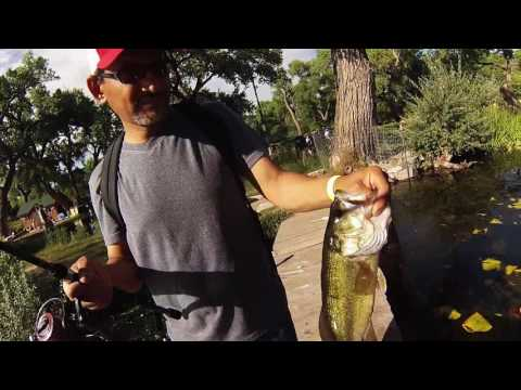 Fishing For Bass At Shady Lakes In Albuquerque, NM.