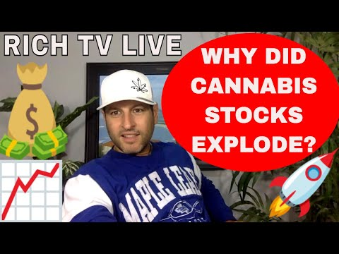 WHY DID CANNABIS STOCKS EXPLODE?