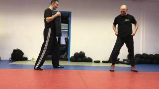 Side Kick with Amnon Darsa at Institute Krav Maga Netherlands