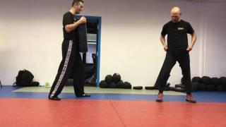 Side Kick with Amnon Darsa at Institute Krav Maga Netherlands