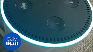 Amazon Alexa gives a conspiracy theory - Daily Mail