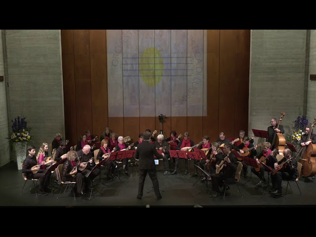J. Williams - Schindler's List - Orchestra Mandolinistica di Lugano - N. Bühler - K. Arsuffi