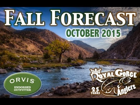 Fishing Report Video for the Arkansas River in Colorado (Royal Gorge Anglers)