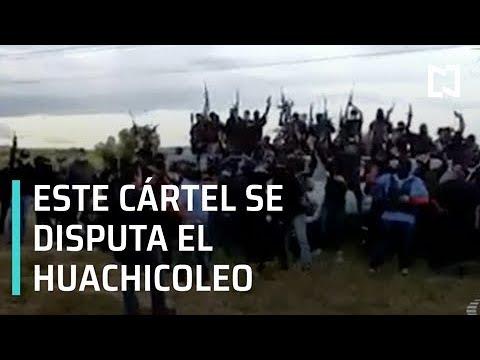 Cártel Santa Rosa de Lima se disputa huachicol en Guanajuato - Despierta con Loret