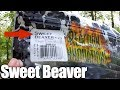 Bass Fishing from the Bank with Texas Rig Soft Plastic Sweet Beaver
