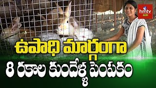 Anantapuram Young Graduate Earning Good Income By Rabbit Farming Hmtv Agri