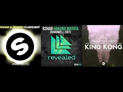 Hakuna Matata Hardwell Edit (Tomorrowland Mashup) - Paul Remake