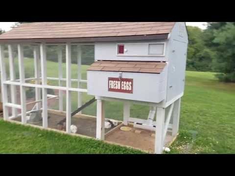 DIY Chicken Coop W/Automatic Door, Feed & Water Systems.