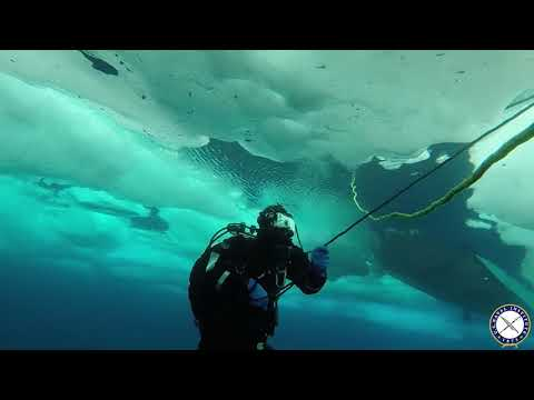 U.S. Coast Guard, Navy Conduct Ice Dives in the Arctic