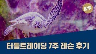 291. [초보] 터틀 트레이딩을 한국에서 배운 후기