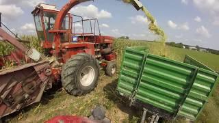 Wozimy Kukurydzę Ładowarką ?! Vlog#183 Dzień 2 ( Ostatnie Hektary ! )