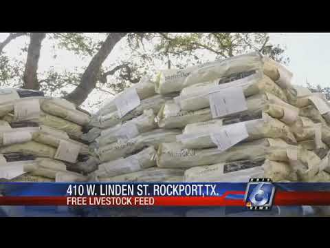 Rockport residents helping feed area livestock