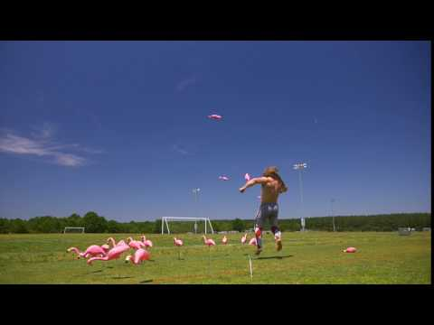 Jujimufu Flamingo Kick