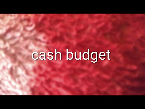 cash budget adjusted profit and loss account
