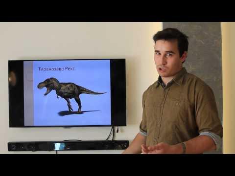 Генетика. Теория вероятности в генетике.из YouTube · Длительность: 13 мин46 с
