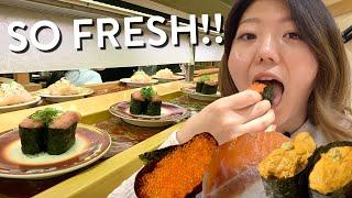 CONVEYOR BELT SUSHI FEAST🍣! Tokyo's FRESHEST Sushi Train Experience