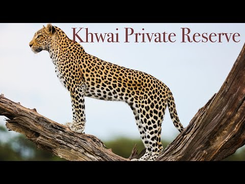 Khwai Private Reserve - Natural Selection Travel - Botswana