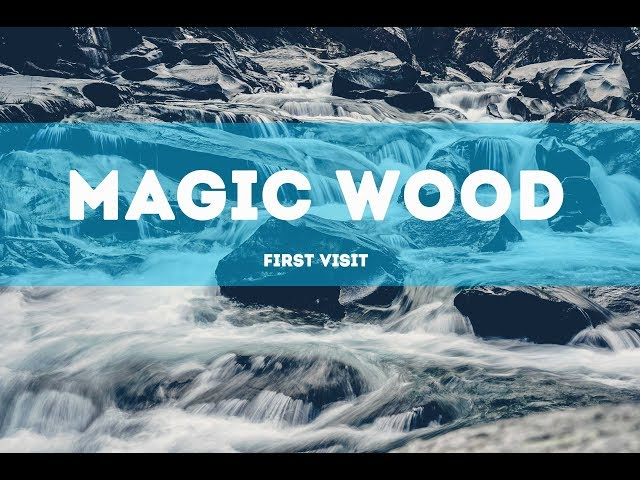 Swiss trip // Magic Wood