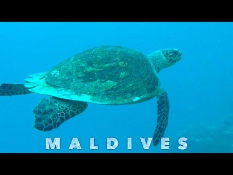 Japan, Thailand, Malaysia and Maldives | 2015 | GoPro