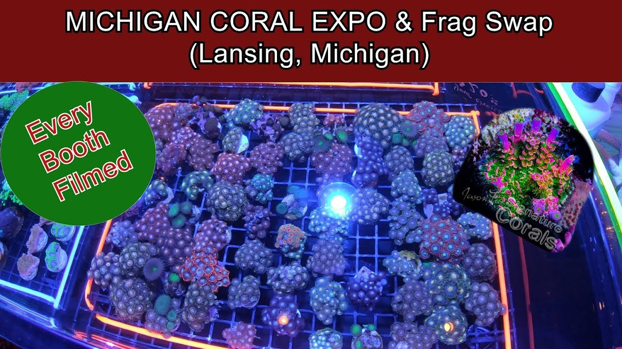 MICHIGAN CORAL EXPO & Frag Swap (Lansing, Michigan) Largest Swap in the Midwest!