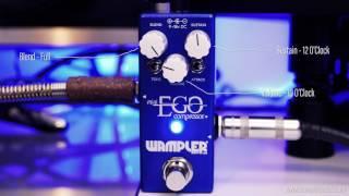 Wampler Ego Mini - Tom Quayle Demo - 4k