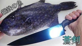 ダイヤモンド級の魚再来!鋼鉄の衣を纏う青い魚を蒼剣でさばく!