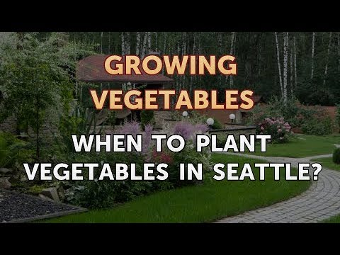 When to Plant Vegetables in Seattle?
