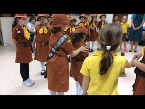 Brownies Promise Ceremony