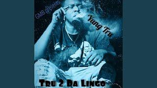 Gambar cover Tru 2 Da Lingo