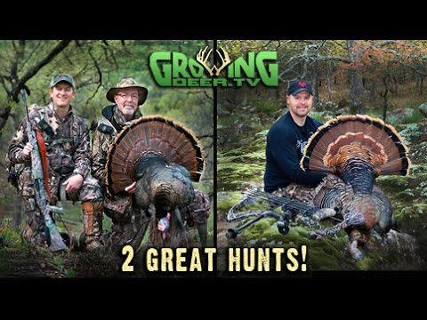 Turkey Hunting On The Move! 2 (Two) Exciting Hunts! (#283) @GrowingDeer.tv