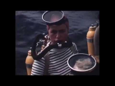 Plongée Dans La Baie - 50's