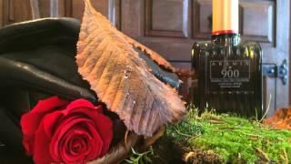 Aramis 900 (1973) fragrance review