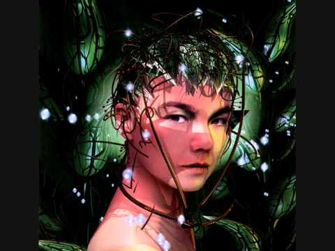 björk - 5 years (alec empire mix)