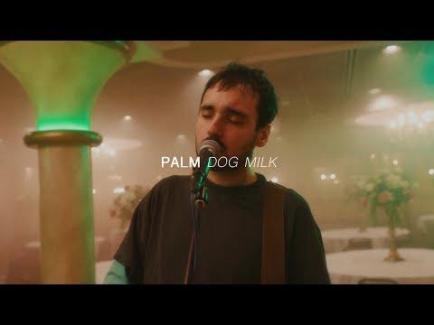 Palm - Dog Milk   Audiotree Far Out