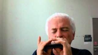 Swan Chromatic Harmonica 1040