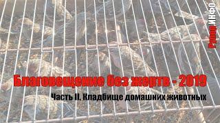 Благовещение без жертв - 2019. «Кладбище домашних животных»