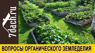 Органическое земледелие - с чего начать, практика на даче + видео