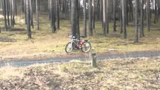 "Video Video 2012-3-373   NATURE/1 ""In the Forest"" Music:ERNESTO CORTAZAR ""Lonely Island"" download MP3, 3GP, MP4, WEBM, AVI, FLV April 2018"