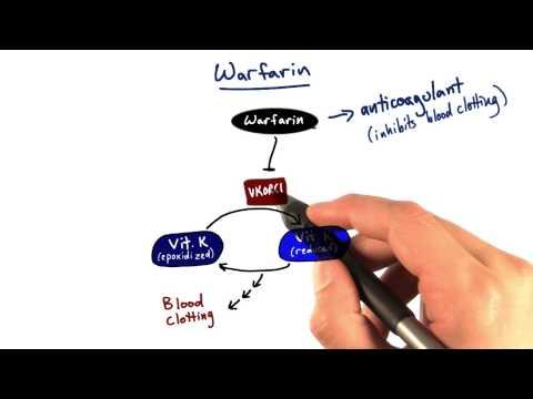 Warfarin - Tales from the Genome