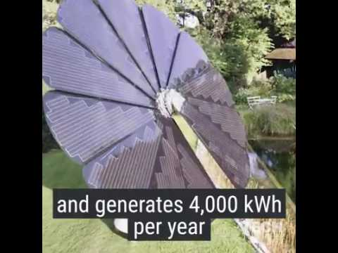 Solar Power Tree video from Rambans