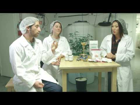 Pesticide Free Cannabis Macaroons