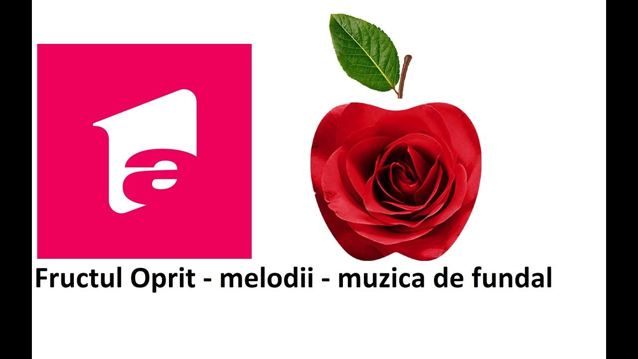 Muzica Din Fructul Oprit Melodii De Fundal Youtube