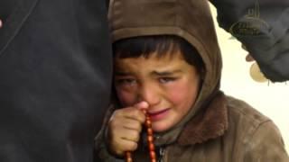 Çfar faji kan femijet (Video Emocionuese)